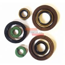 KTM400 2000 - 2007 Engine Oil Seal Kit